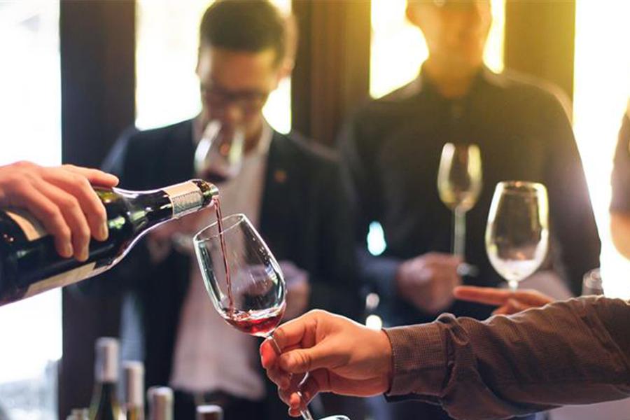Conférence Vitis Vinifera : le vin, de la création du vignoble à sa mise en bouteille
